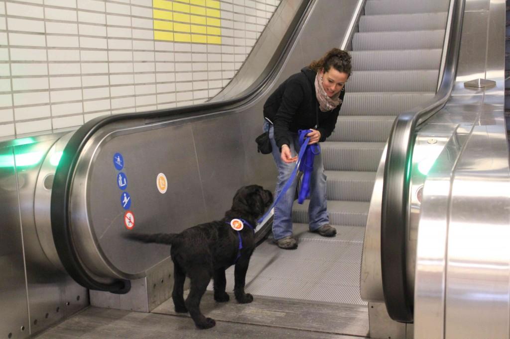 Laetitia travaille l'escalator avec Igor