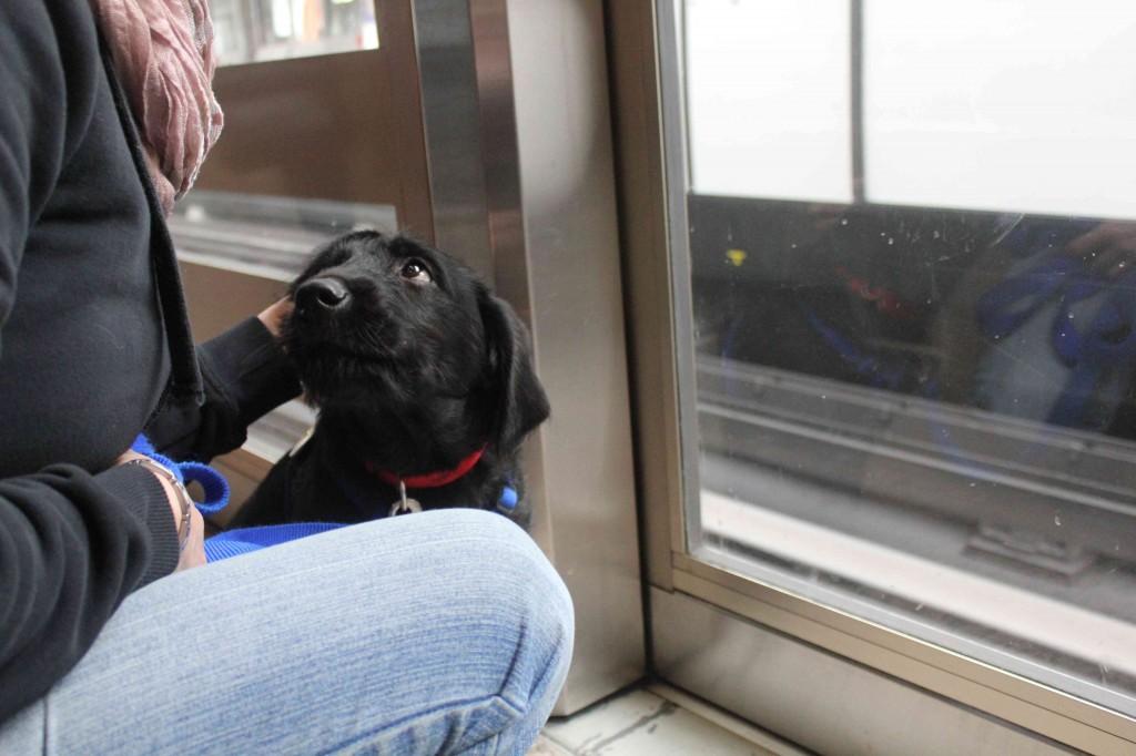 Igor et Laetitia dans le métro