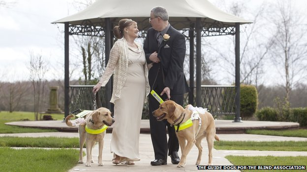 Awwww, couple marries after meeting through their guide dogs