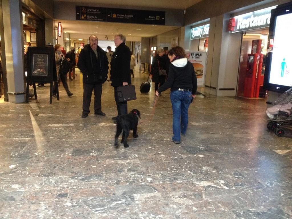 Igor à la gare SNCF
