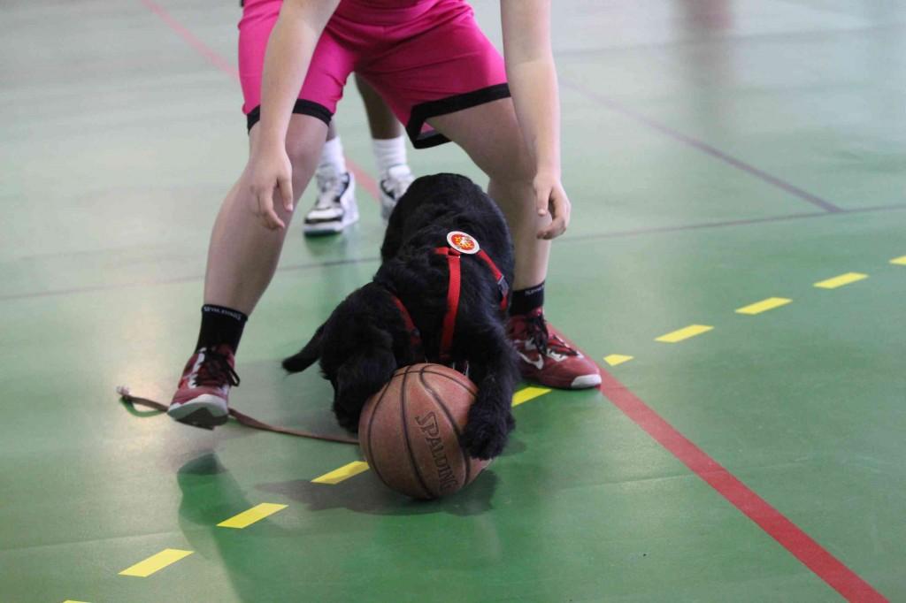 Igor et Marianne jouent avec un balon de basket