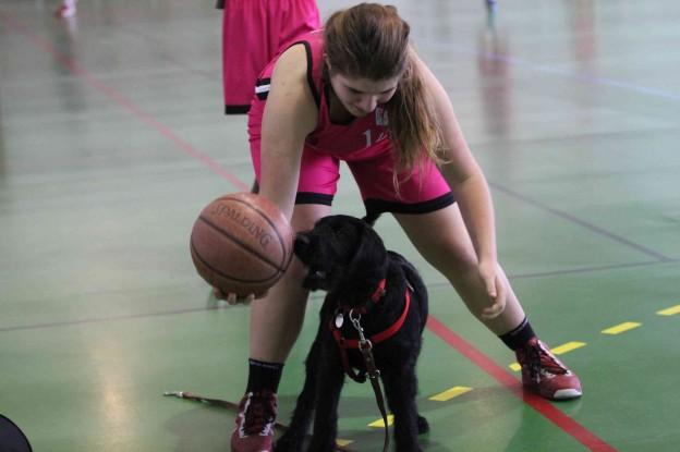 Igor au basket