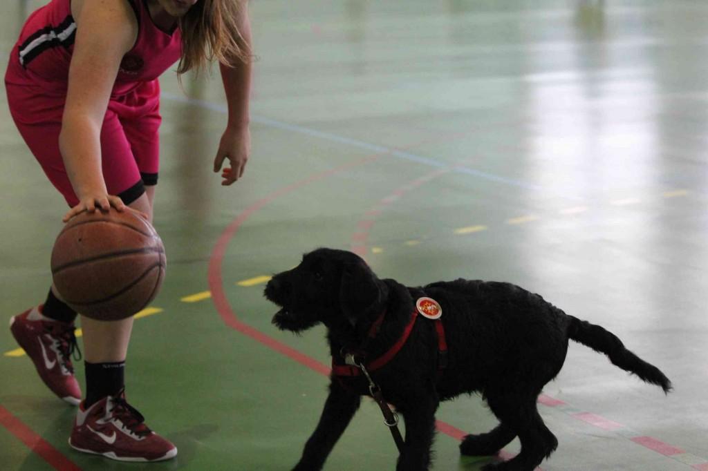 Igor joue avec un balon de basket