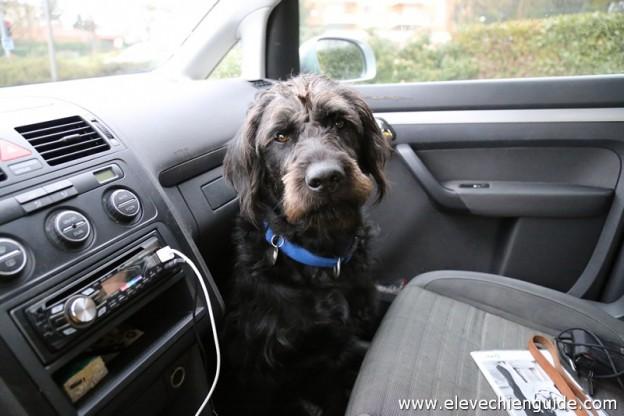 Igor dans la voiture airbag off