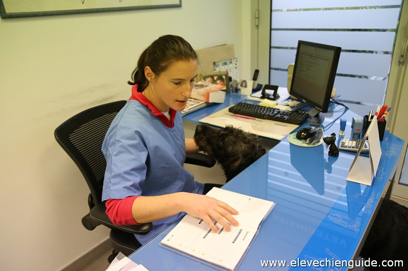 IMG_0836 Vétérinaire examine Igor (12)