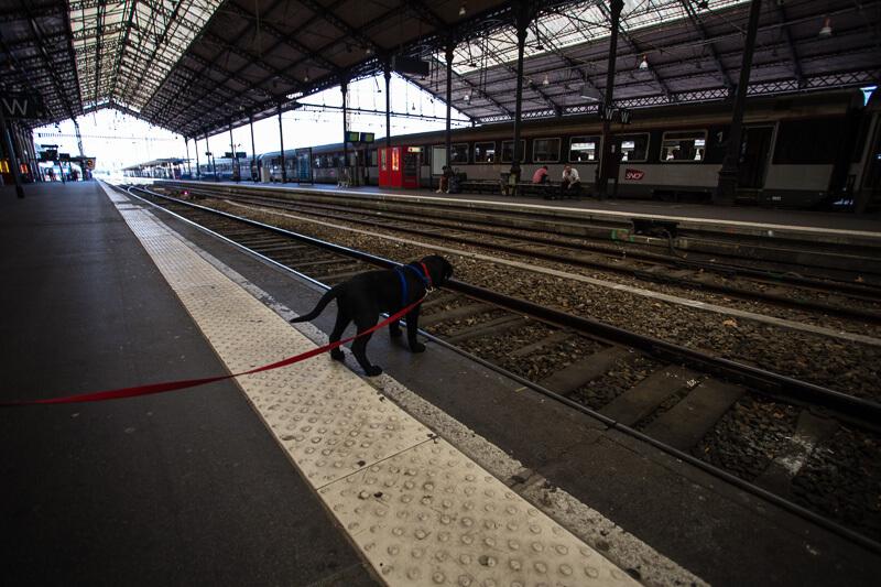 Le petit Massaï regarde le vide du quain de la gare.