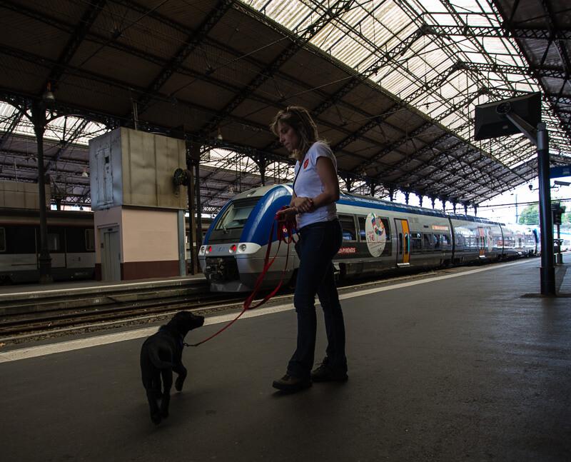 Massaï rencontre un train pour la première fois.