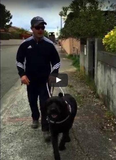 Nicolas et Igor en promenade